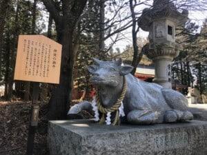 冨士御室浅間神社 神使の撫牛